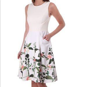 NWOT Ted Baker karolie trellis Print white Dress
